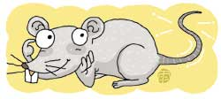이것이 쥐꼬리